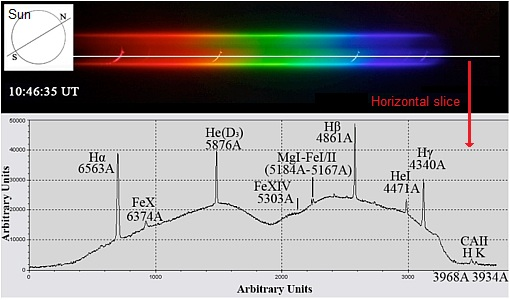 Coronal dynamics and spectra